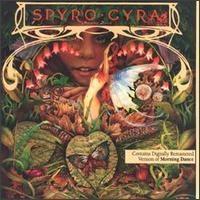Spyro Gyra / Morning Dance
