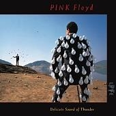 Pink Floyd - Delicate Sound Of Thunder - Live
