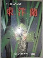 동양란-동양란 명품 도감 (큰책/양장본)
