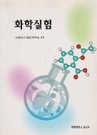 화학실험 (2008년판)