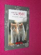 세상에서 가장 예쁜 고양이 카이 //160-5