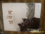 교원 / 교원 소설 삼국지 20 오장원에 떨어진 별 / 김우일 글. 정윤철 그림 -습기젖음.사진.꼭상세란참조