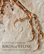 Birds of Stone : Chinese Avian Fossils from the Age of Dinosaurs   (ISBN : 9781421420240)