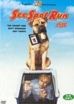 [DVD] 스팟 (See Spot Run)(스냅케이스)