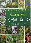 당뇨병을 고치는 산야초 효소 - 조심해야 할 독초 30가지 수록 (초판3쇄)