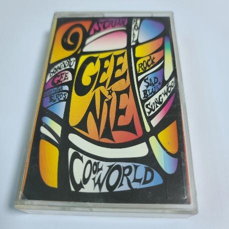 (중고Tape) 지니 1집 - Cool world