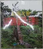백두대간 산림식물 유존종 거수(1)