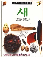 비주얼 박물관 1 새 (385-1)