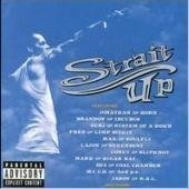 V.A. - Tribute / Strait Up: Tribute To Snot (수입)