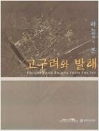 [도록] 하늘에서 본 고구려와 발해 - 서울대학교박물관 제45회 기획특별전 (2008년)