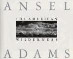 American Wilderness  9780821217993  /사진의 제품   /  상현서림 /☞ 서고위치:ON 1 *[구매하시면 품절로 표기됩니다]