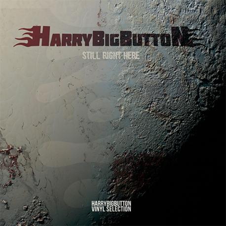 [미개봉][LP] 해리빅버튼 (HarryBigButton) - Still Right Here (Vinyl Selection) [180g Black Vinyl LP 300장 한정반][LP]