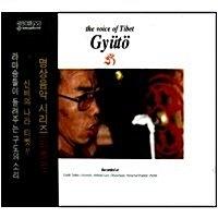 [미개봉] V.A. / Chant Of Gyuto Vol. 1 (티벳 명상 음악) (2CD)