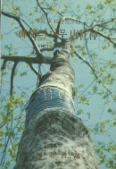 신비의 나무 당두중