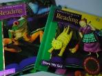 Houghton Mifflin Reading :Surprises + Here We Go   [두권/미국교과서]  ///