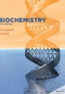 Biochemistry (5th Edition)