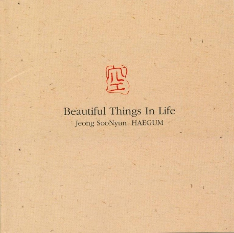 Jeong SooNyun - Beautiful Things In Life