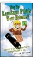 why do kamikazze pilots waer helmets?