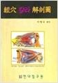 경혈 칼라 해부도 (2006 초판)