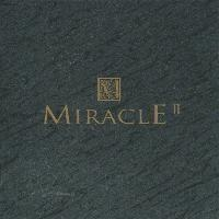 V.A. / Miracle 2