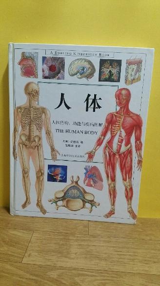 인체(THE HUMAN BODY)(중국도서)