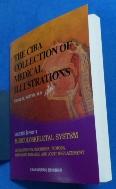 (한글판) 시바 원색도해-THE CIBA COLLECTION OF MEDICAL ILLUSTRATIONS VOL: 8 PART (2)  9788980854646    근골격계 [Ⅱ]   /사진의 제품 :☞ 서고위치:KB 2  * [구매하시면 품절로 표기됩니다]