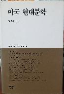 미국 현대문학(대우학술총서.인문사회과학 94)