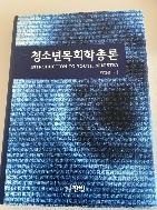 청소년목회학총론