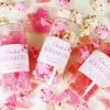 사쿠라 코하쿠토 벚꽃 에디션