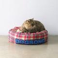 도그송 고양이 강아지 체크 도너츠쿠션