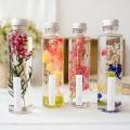 하바리움(Herbarium) - 프리저브드 / 드라이 플라워