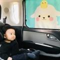 헬로미니미 차량용 햇빛가리개 귀욤양