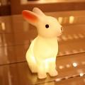 [더우드랜드][스크래치리퍼전]LED 라핀 램프 토끼램프 미니토끼램프 수유등 수면등 취침등