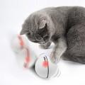 펫디아 고양이 장난감 LED 데굴데굴