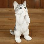 기도하는 고양이BLACK/WHITE