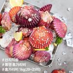 산지직송 경남 통영 홍가리비 1kg 20~25미
