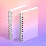 [컬러칩] 태스크 매니저 HALF YEAR - 드림 캐처 2EA