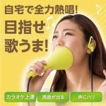 일본히트 정품 우타엣토 음치탈출 방음마이크