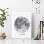 [오홀리브] 보름달