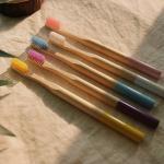 NPE 프리미엄 대나무 칫솔 5color 미세모 생분해 밤부