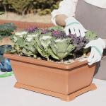 홈가드닝 옥상 베란다 친환경 유기농라이프 텃밭 화분