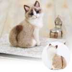 하마나카 랙돌 고양이 키트