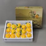 [과일연풍] 청정제주 한라봉 세트 5kg/15~20과