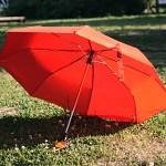 A rainy day 3단완전자동우산/오렌지