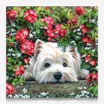 꽃밭의 요크셔테리어 DIY 보석십자수 십자수 비즈세트