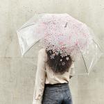 [A RAINY DAY] 벚꽃 일회용 비닐우산/화이트