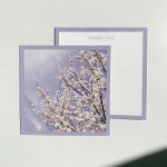 밍키트 벚꽃 감성 엽서