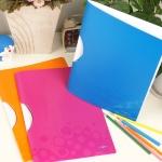 [Leitz] 스크래치에 강한..30매 지철 클립홀더-독일 라이츠 WOW Color Clip File HF213-1