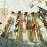 유리병 꽃 편지 시즌2 편지지 5type 기념일 이벤트