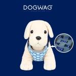 [도그웨그 DOGWAG] 강아지 LED 하네스, 저녁 산책 하네스